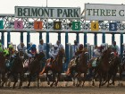 I'll Have Another scratched from Belmont Stakes