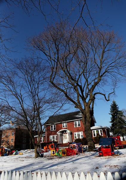 Klein Farm tenants fined for tree cutting