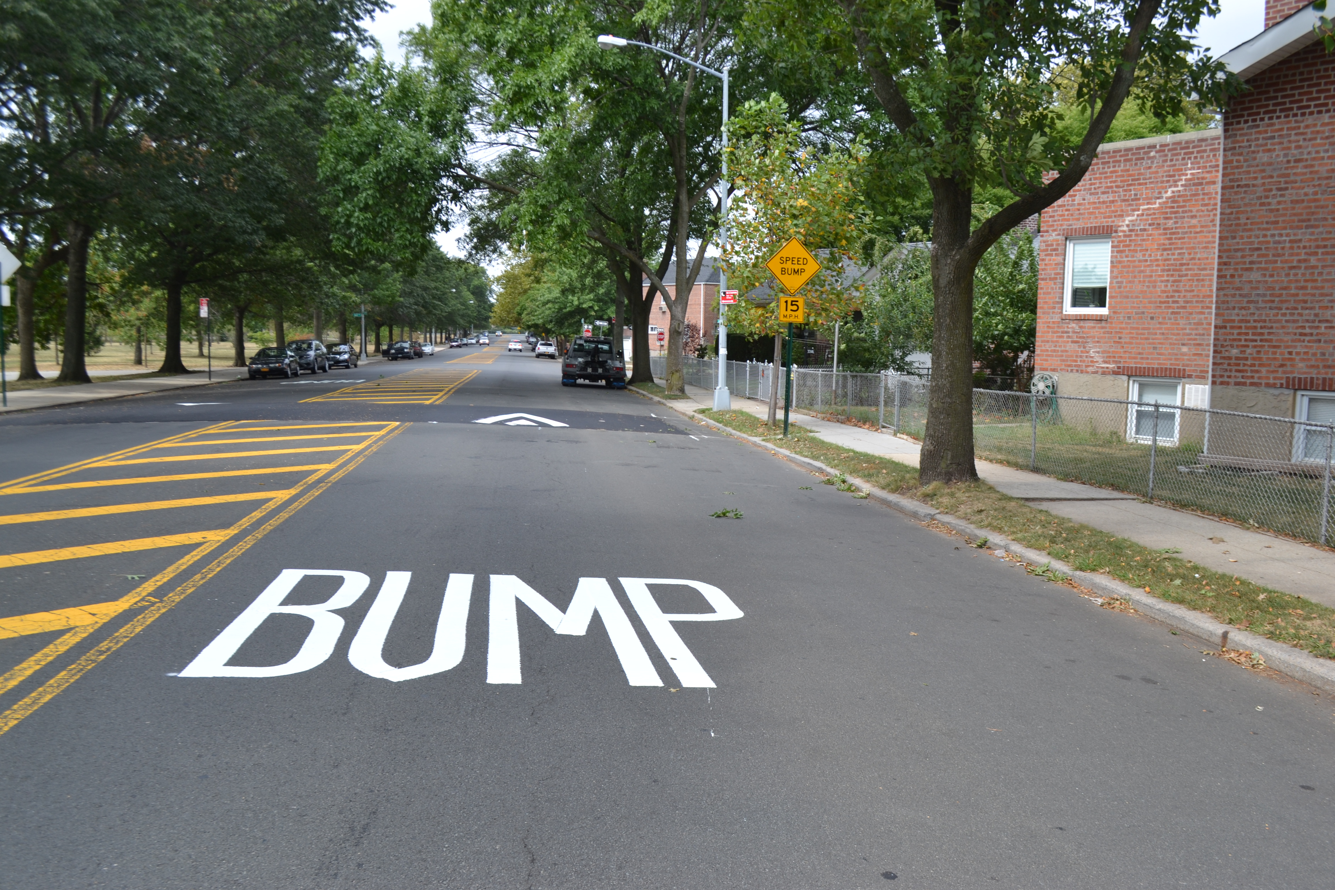 Speed bumps installed along Juniper Valley Park, residents call for more safety measures
