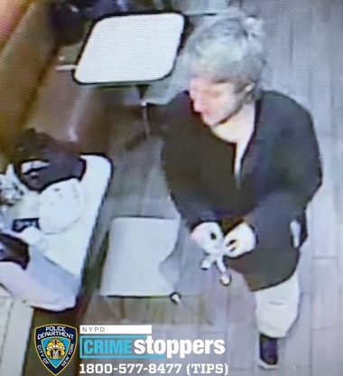 Man robs and threatens to kill woman and her dog inside of a Woodside Dunkin': NYPD